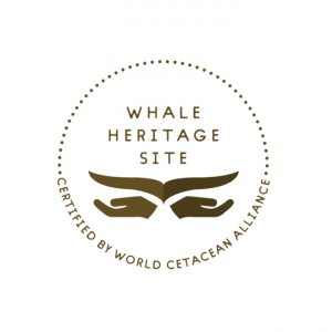Whale Heritage Site