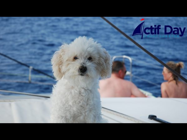 Captain Charles
