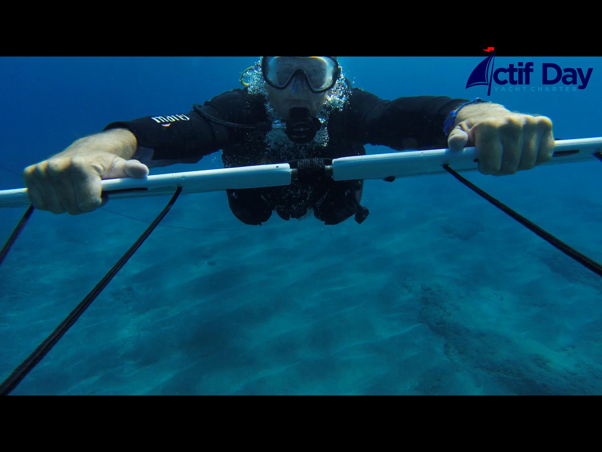 Subwing in Tenerife