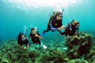 Diving in group in Tenerife
